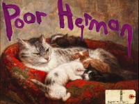 poorhermancats